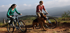 Mountian Biking